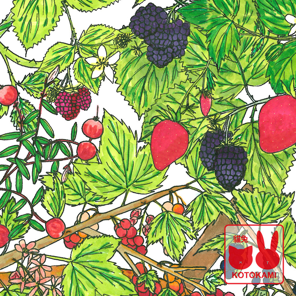 Work in Progress: Study of Berries